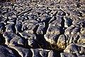 Limestone pavement, Farleton Fell - geograph.org.uk - 1015582.jpg