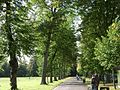Linden Avenue, Pump Room Gardens - geograph.org.uk - 1201054.jpg