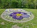 Lippstadt Blumen P1010597 (8708738735).jpg
