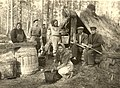 Lithuanian deportees collect resin in the Siberian camp of Solovjov, Irkutsk Region.jpg