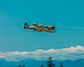 Living History Buzzing Washington State... (14826702807).jpg