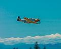 Living History Buzzing Washington State... (14826702807).jpg