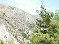 Llogara, Vlorë (1).jpg
