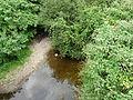 Logne D147 la Rivière amont.JPG