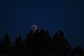 Lunar Eclipse 2018 SG 009 (28804399457).jpg