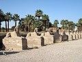 Luxor Sphinxallee 05.jpg