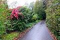 Mühlenweg (Odenthal). Reader-17.jpg