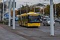 MAZ-215 (Minsk) 1.jpg