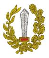 MIL ITA ass 08 IX reparto assalto (c).png
