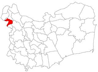 Măcin Town in Tulcea, Romania