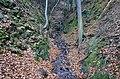 Malý přítok řeky Metuje - panoramio.jpg
