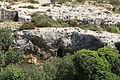 Malta - Rabat - Triq San Pawl tal-Qliegha - Bingemma Valley (Victoria Lines) 02 ies.jpg