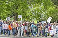 March for Science, Santa Rosa, California (34142135791).jpg