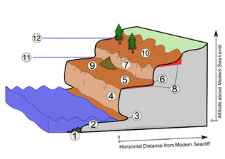 Marine Terrace diagram.png