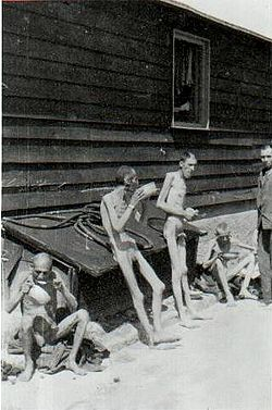 Survivors of Gusen shortly after their liberation
