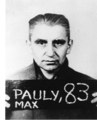 Max Pauly.png