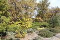McConnell Arboretum & Botanical Gardens - Redding, California - DSC03014.JPG