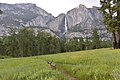 Meadows and fall of Yosemite.jpg