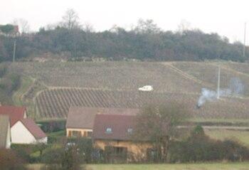 Mellecey vigne.JPG