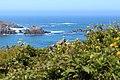 Mendocino Coast from Albion - Flickr 2013.jpg