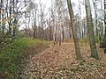 Mikolow, Poland - panoramio (114).jpg