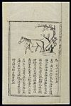 Ming herbal (painting); Horse Wellcome L0039419.jpg