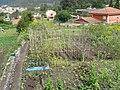 Miniparcelas en Cangas Pontevedra 2.jpg