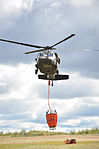 Minnesota National Guard battles Pagami Creek wildfire 110914-A-BC699-006.jpg