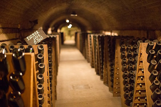 Moët & Chandon caves 13.jpg