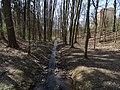 Modřany, Píšovický les, Lhotecký potok (01).jpg