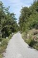 Monte Sabotino (2).jpg