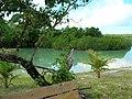 Morning lagoon view (2) (8746463537).jpg