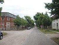 Lindenallee on Anhalter Strasse
