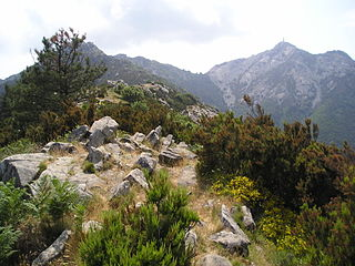 Mount Capanne Mountain in Italy