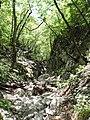 Mudna dol - panoramio (8).jpg