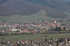 Nécropole nationale de Sigolsheim 2013 19.jpg