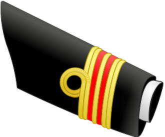 Canadian Armed Forces ranks and insignia - LCdr (medical)'s sleeve variant