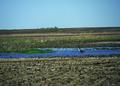 NRCSSD01042 - South Dakota (6103)(NRCS Photo Gallery).tif