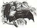 NSRW great horse-shoe bat.jpg