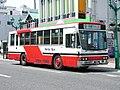 NanbuBus P-LV314K,No.291.jpg