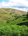 Nant Rhydwilym valley - geograph.org.uk - 211650.jpg