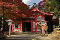 Nara 2008-11-22 (3188501964).jpg
