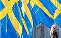 National Day of Sweden 2015 7900.jpg