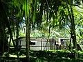 Native House - panoramio.jpg