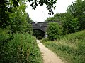 Nature Reserve, Rugby, Warwickshire - geograph.org.uk - 1972000.jpg