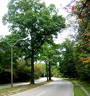Neponset Valley Parkway - Looking from Boston toward Paul's Bridge and Milton