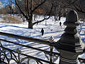 New York. Central Park. Snowy (2797953816).jpg