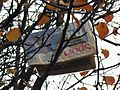 Newspaper Tree (7603101474).jpg