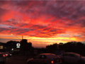 Newtown, Sydney, Australia Sunset.png