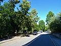 Nicolaistraße Pirna (43185387621).jpg